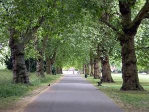 southwark-park-alley
