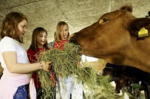 animals-farm-children